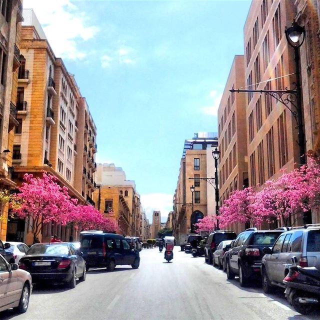 Live Love Beirut 😍 MyBeirut MyLebanon Lebanon Lebanese ... (Beirut ,Down Town)