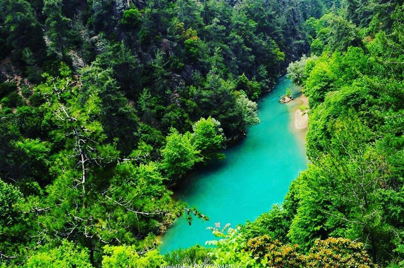 Jannet Chouwen, is one of the most picturesque places in Jbeil Caza, the... (Chouwen Lake)