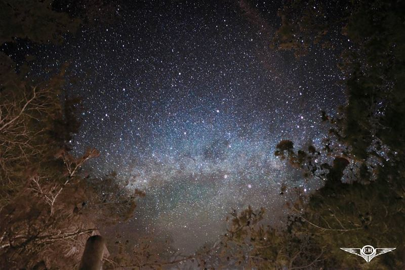 I know nothing with any certainty, but the sight of the stars make me...