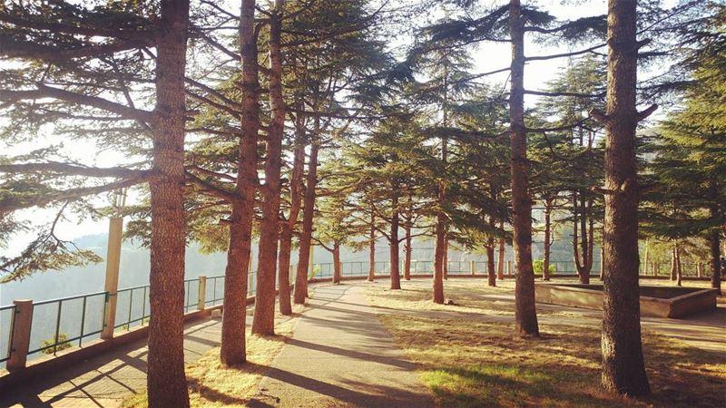 livelovebcharre livelovelebanon Lebanon lebanon_hdr hd_lebanon ... (Mar Lichaa)