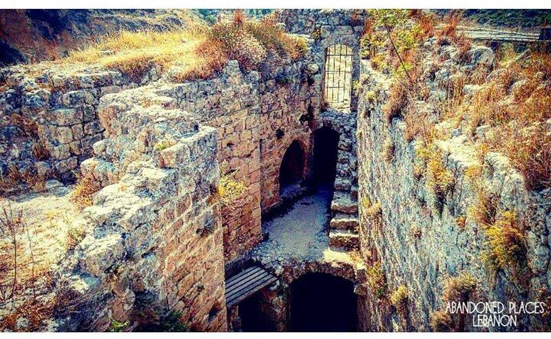 Good morning! 👋 livelovemseilha mynorth northlebanon livelovebeirut ... (Mseilha Fort)