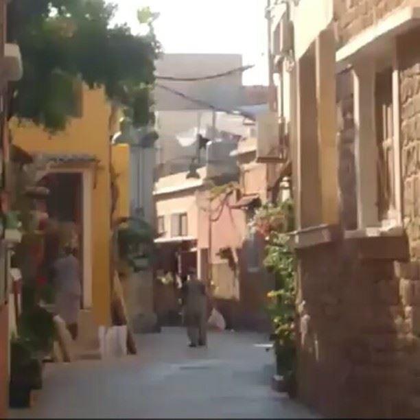 ~..اجمل شعور هو أنو تحس حالك عم بتسافر عَبر الزمن. هيدا الجِد هَداني, و مِن (Tyre, Lebanon)