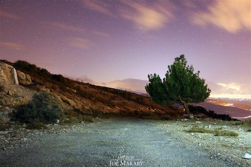 ayto ehden wearelebanon beautifullebanon tree night sky stars ...