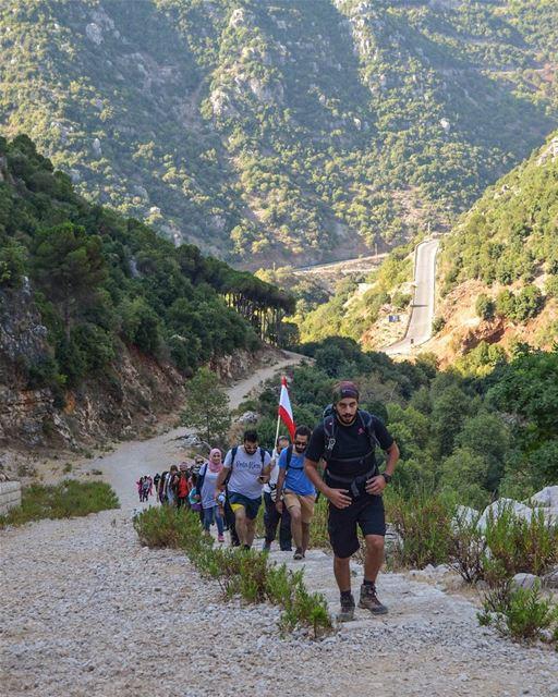 Disconnecting 🍃 ... (My Adventures Lebanon)