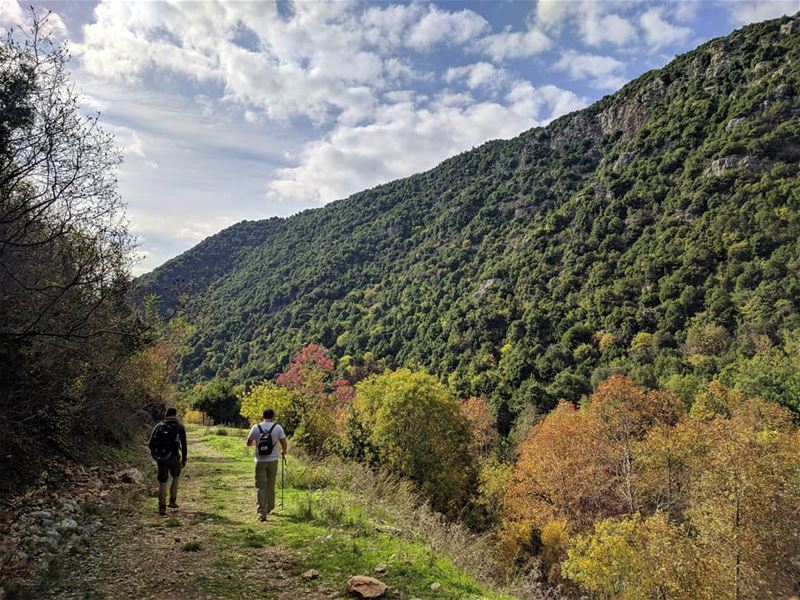 An endless adventure 🚶🍃⚠COMPETITION⚠: WIN AN AWESOME HIKING BAG, CHECK... (Lebanon)
