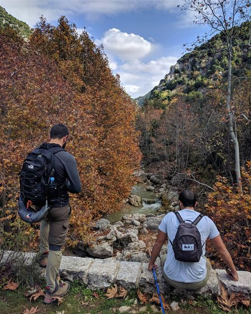 A hypnotizing view🍁⚠COMPETITION⚠: WIN AN AWESOME HIKING BAG, CHECK OUT... (Lebanon)