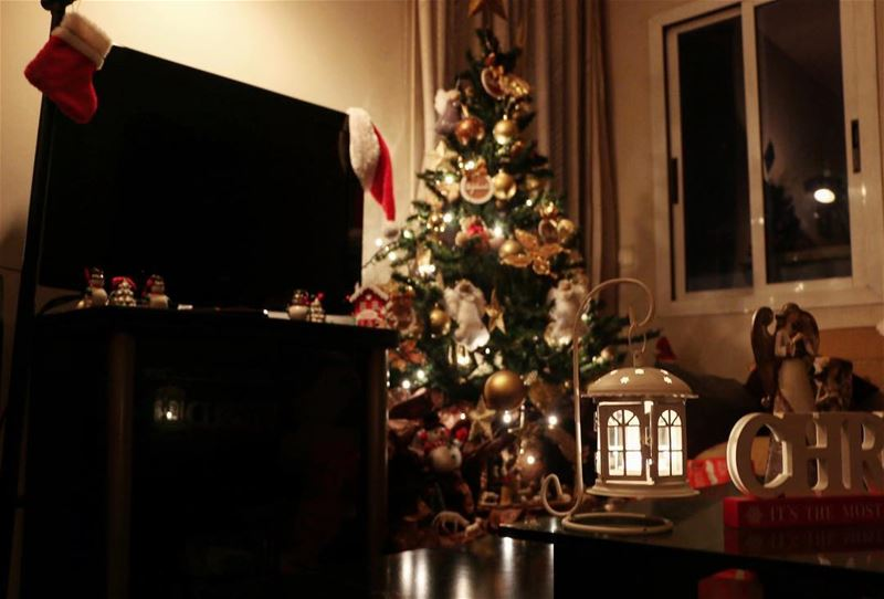 Christmas warms the whole house 😍🎄💫 christmaspictures christmas ...