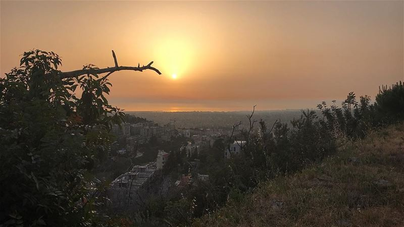 This.Is.For.Me🔥🌿🇱🇧 morenature sunset strength baabda wild free... (Baabda District)