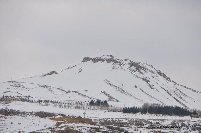 The Cedar Reserve (Arz Tannourine)