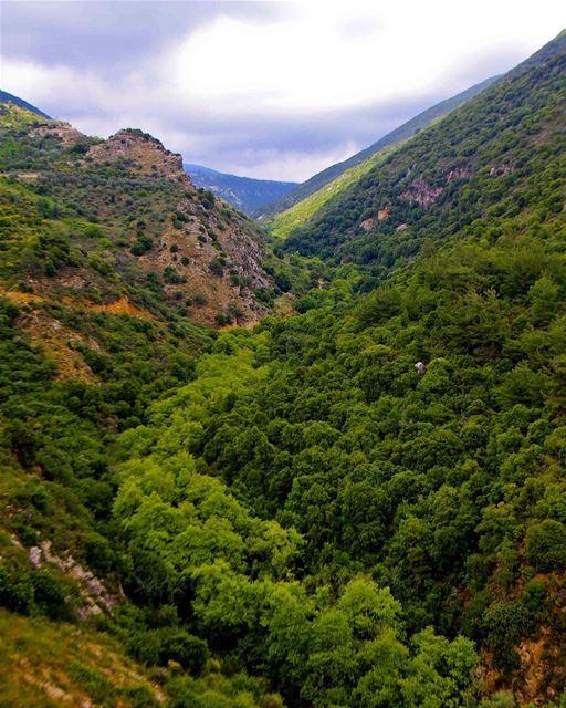 Eye candy 🗺🌳..... saraheidphotography lebanon lebanon_hdr ... (Jarjou`, Al Janub, Lebanon)