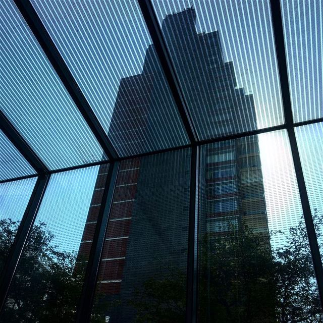From behind the glass Lookingup_architecture jj_architecture...