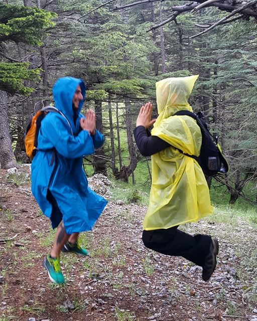 Nothing to see here, two monks levitating in the deep dark forests of...
