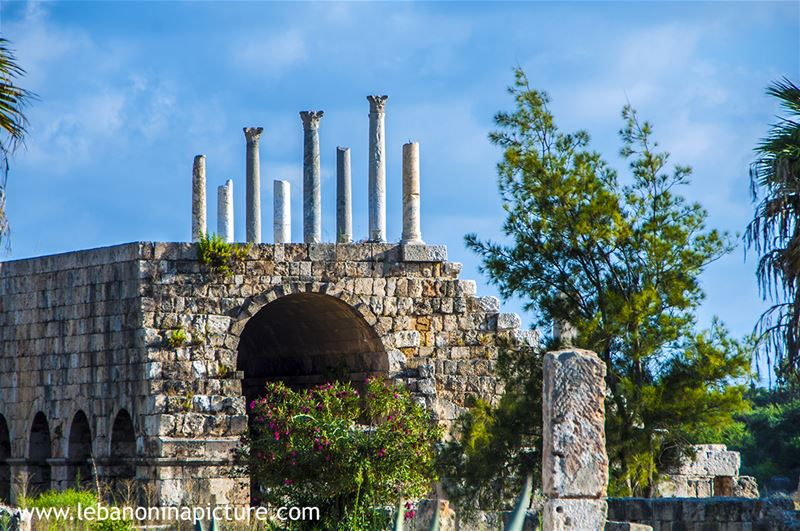 Tyre Archaeological Phoenician and Roman Ruins