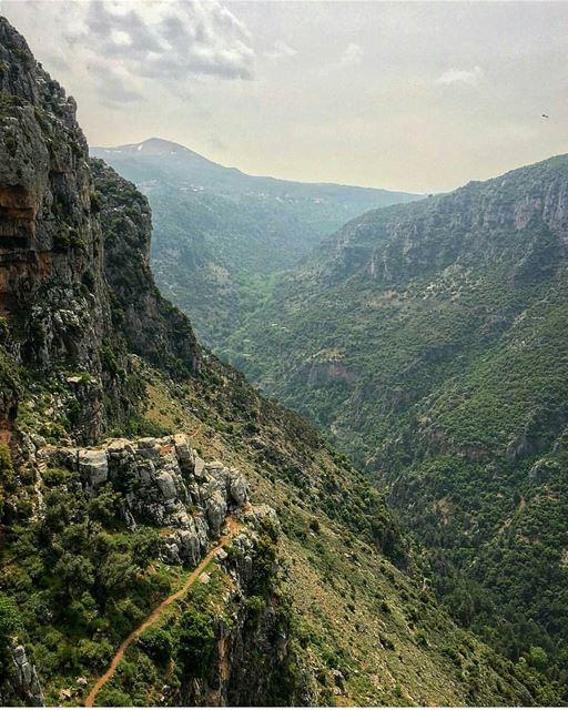 Good morning! 👋@chady.el.khoury------------------------------------------ (Ouâdi Qannoûbîne, Liban-Nord, Lebanon)