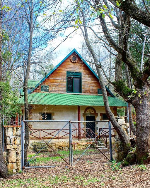 Anyone else ever feel like building a log cabin in the woods and leaving...