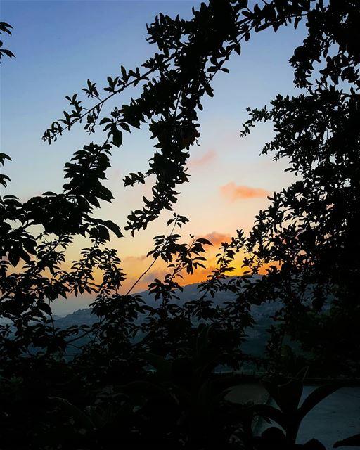 What a beautiful evening. Hello 🖐🏻💙💛 ........... Lebanon ... (Beit Ed-Deen, Mont-Liban, Lebanon)