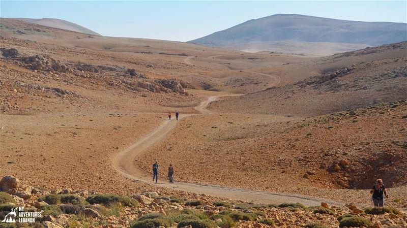 The way to the top🗻 myadventureslebanon hikinglife outdoors ...