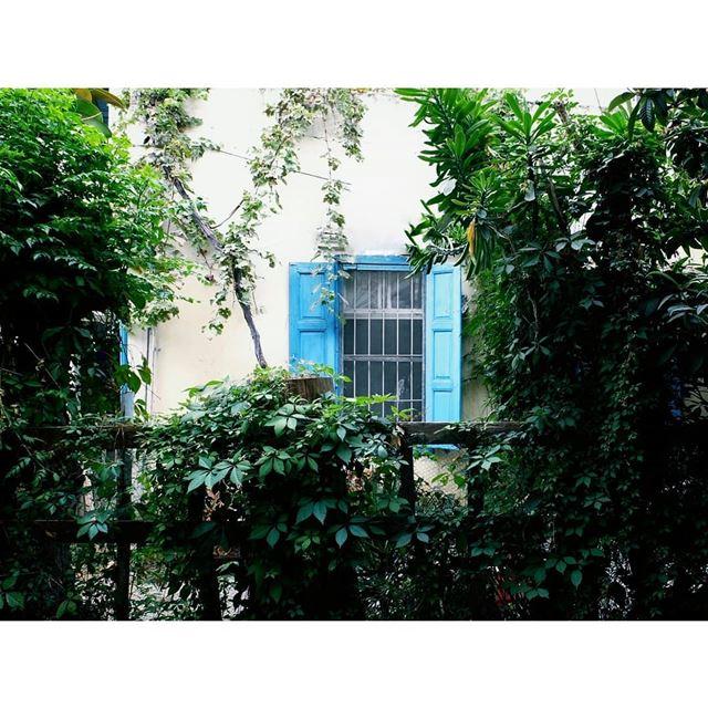 livelovebeirut ig_lebanon lebanonbyalocal fujifilmlebanon fujifilm ... (Beirut, Lebanon)