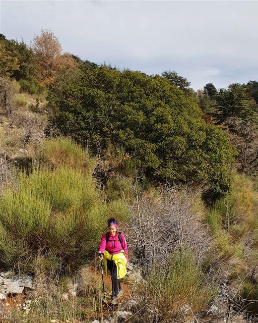 She brings the colours to life 🍃💚 myadventureslebanon mountaineering ... (Lebanon)