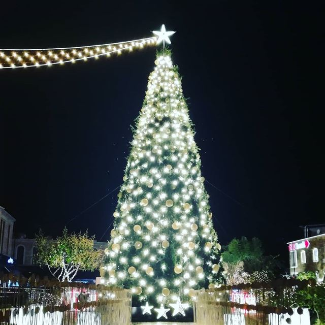 The holiday comes to us 🎃🎄🎉 happyhap byblostree Lebanon ...