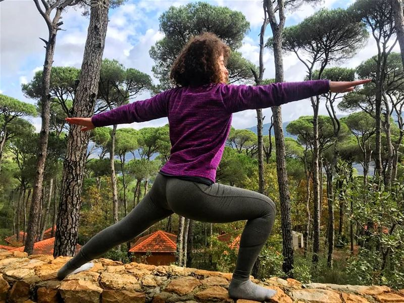 Experience the magic of the Bkassine Forest in the cold season. 🌳🌫...