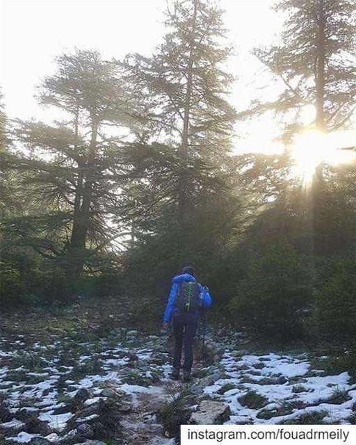 hike hikinglb🌳🍀🌿🍃☀️ hikinglb hikers mountainarecalling ... (Aïn Zhalta, Mont-Liban, Lebanon)