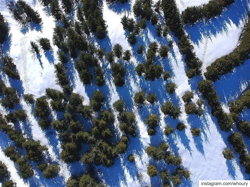 aerialphotography aerial dronefly dronestagram dronephotography drone dji... (Al Shouf Cedar Nature Reserve)