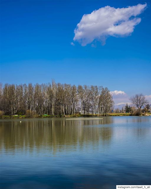 💙---- nature naturephotography reflection beautiful landscape ... (Taanayel- Bekaa)