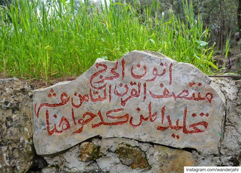 Horsh Baaklin 🌱🌳🍃⛰🌻🌸 lebstory lebanontraveler lebanonbyalocal ... (حرش بعقلين)