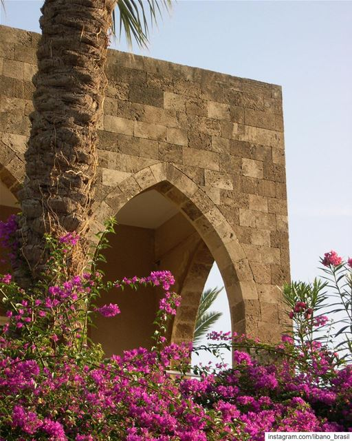 🇱🇧🇧🇷 Primavera em Byblos para inspirar nesta quarta-feira!⠀⠀⠀⠀⠀⠀⠀⠀⠀... (Byblos, Lebanon)