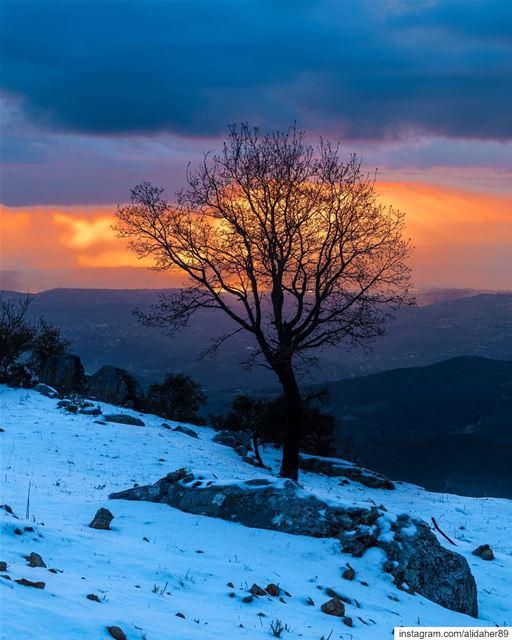 The beauty of sunset 🌅.... sunset sunsetpics landscape... (Jabal Sâfi)