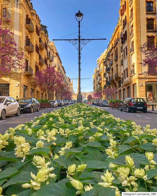 At every crossroad, you will find choice..... neverstopexploring ... (Downtown Beirut)