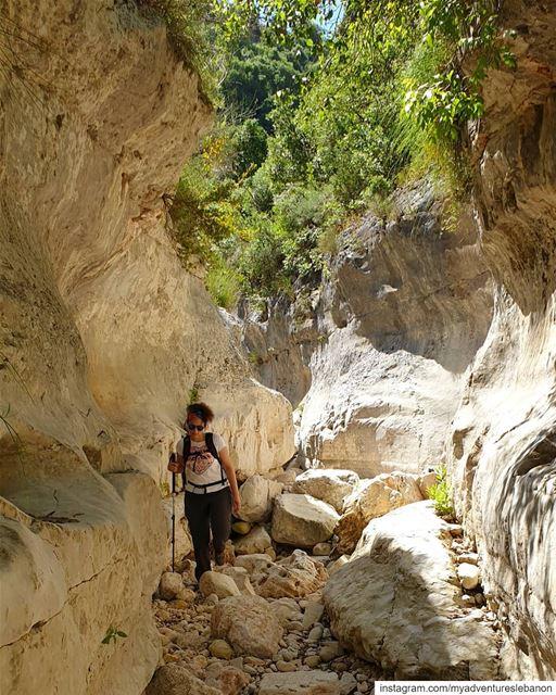 Mosquito ambush 🦟 myadventureslebanon mountaineering choosemountains ... (North Governorate)
