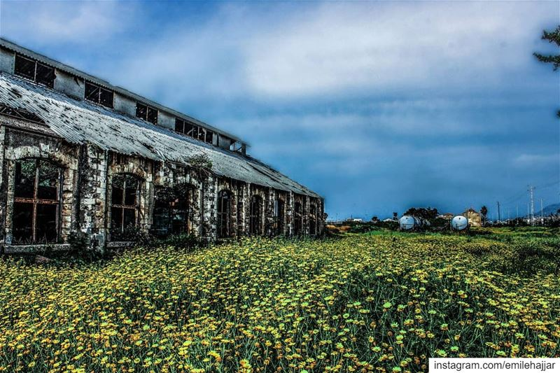 Old trainstation Tripoly ig_masterpiece @topsunsetshots @sky_sultans @ig_