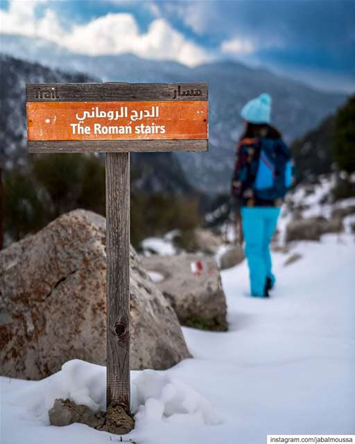 Our snowshoeing adventure is postponed.There will hopefully be more snow,... (Qehmez)