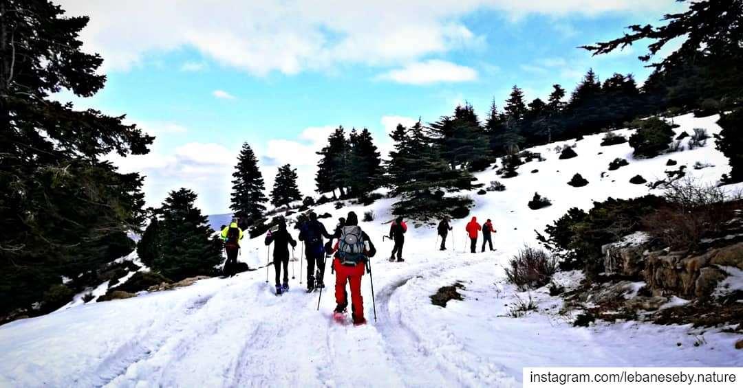 A typical winter hike.. akkar kobayat snowshoeing winteractivity ... (محمية كرم شباط)