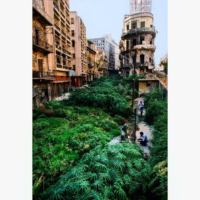 Beirut-1982 Beirut-1982 the green line demarcation zone between east and west during the civil war ,