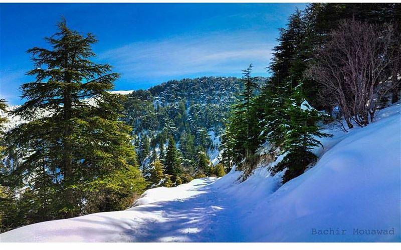 😊 liveloveehden mynorth northlebanon myehden livelovebeirut ... (Ehden, Lebanon)