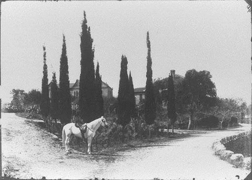 AUB College Hall and Marquand House, with White Horse of President Daniel Bliss  1890s